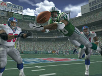 With Madden NFL 2005, it's just another day at the office.